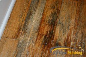 mold-on-wood-floor-wood-polishing-floor-polishing-singapore